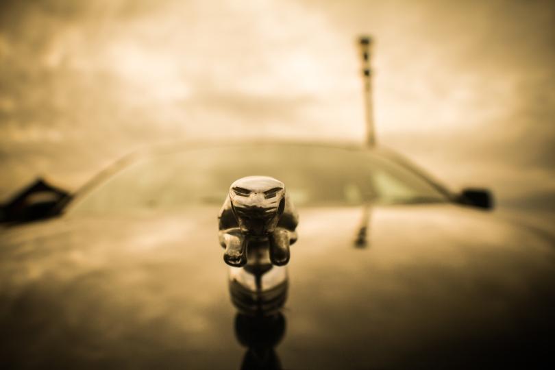 New Jaguar pictures.