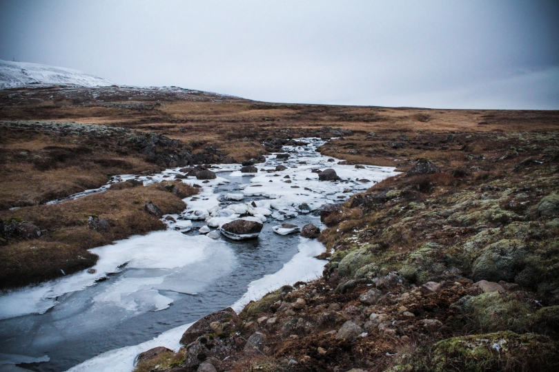 Frozen stream.